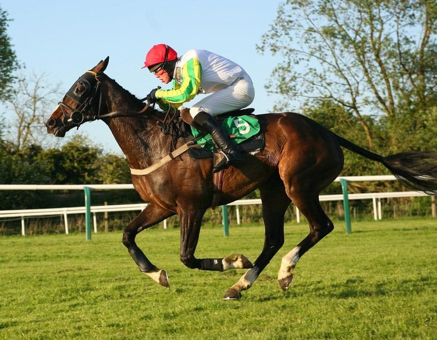 watch frankel win 2000 guineas betting